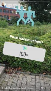 Instagram Umfrage mit Foto